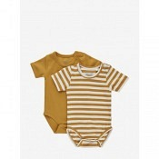 Body 2-Pack - amber gold